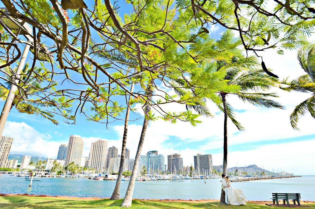 ハワイヤシの木と海とビル Photo by Goerge (AFLOAT Hawaii)
