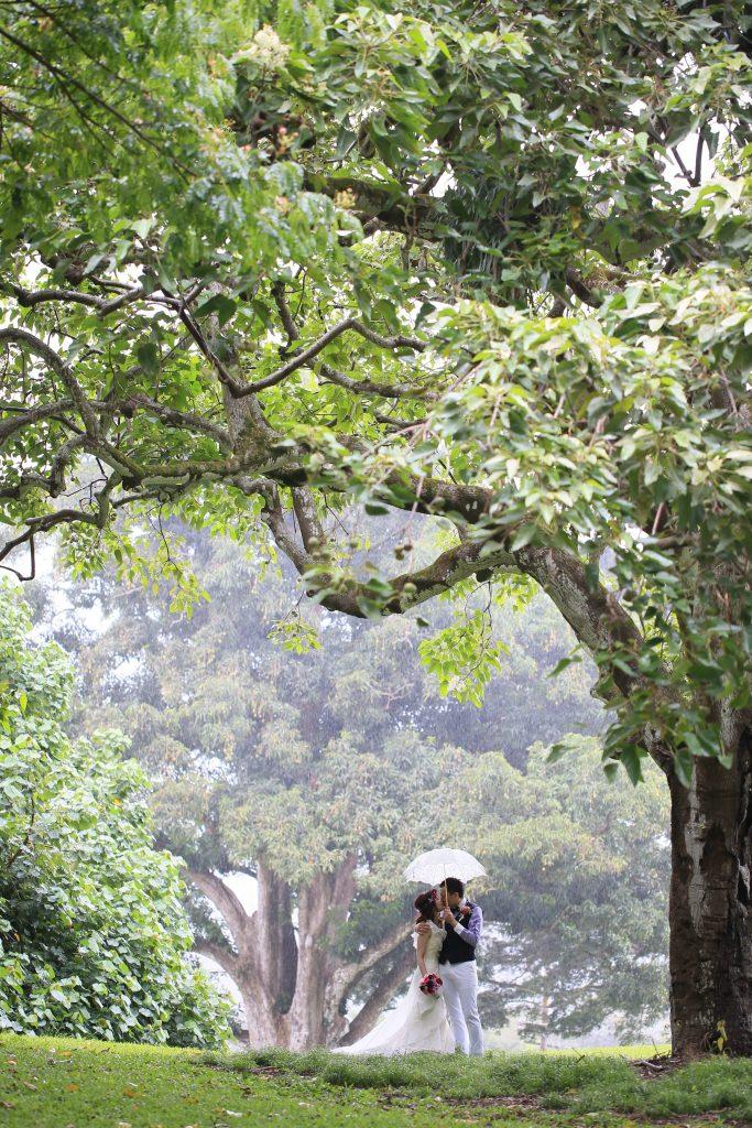 ハワイ ヌアヌバレーパーク