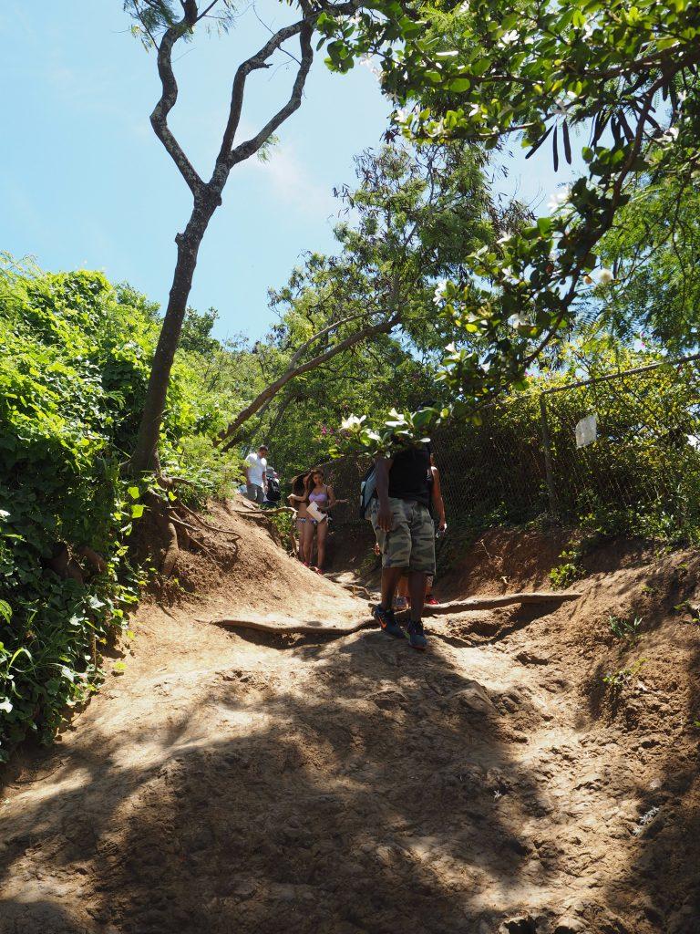 ハワイ おすすめハイキング