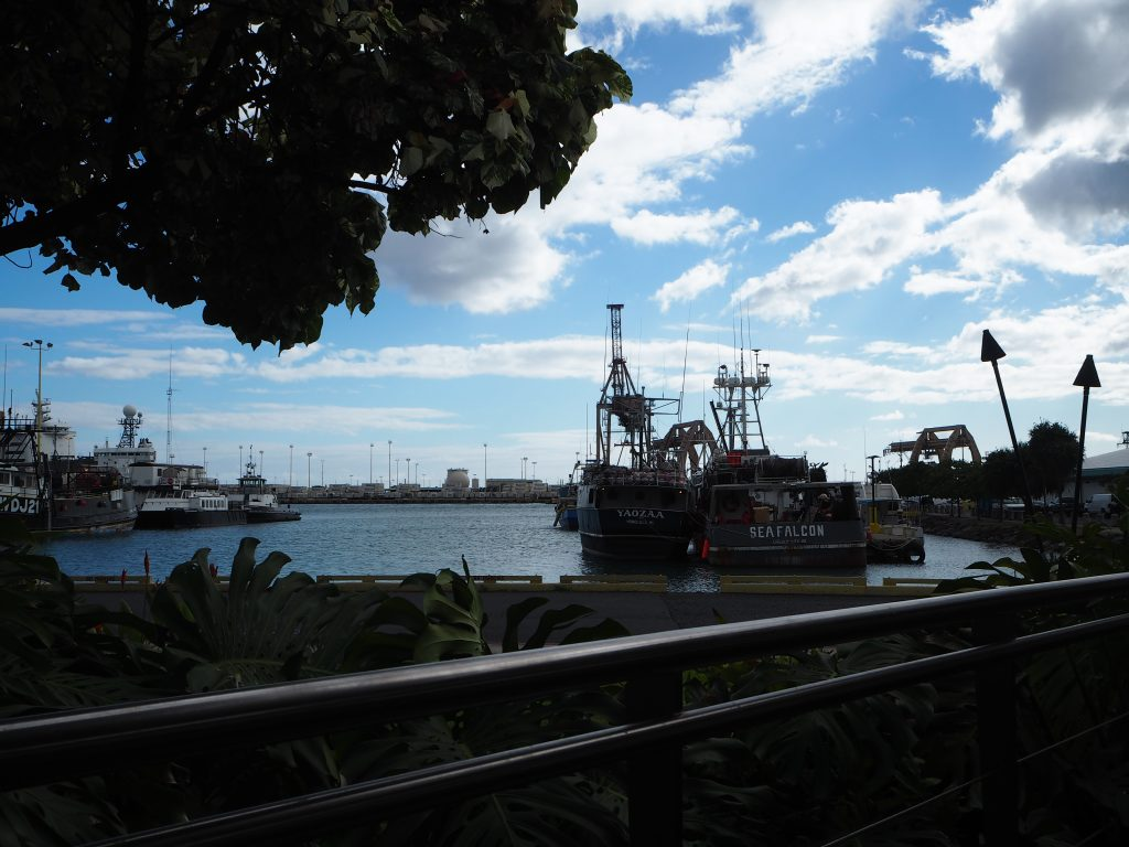 Nico's pier 38 ハワイ ランチ