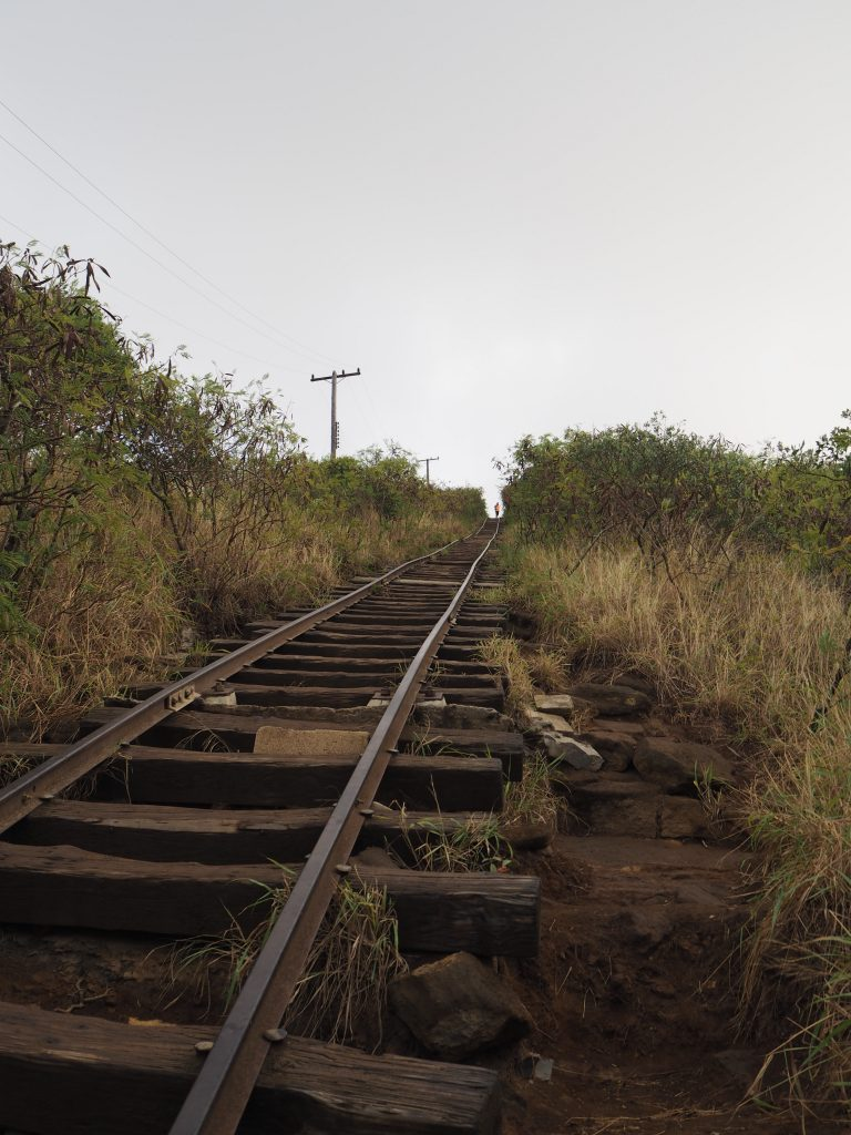 ココヘッドトレイル 階段