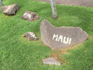 マウイ島 日帰り 旅行 人気