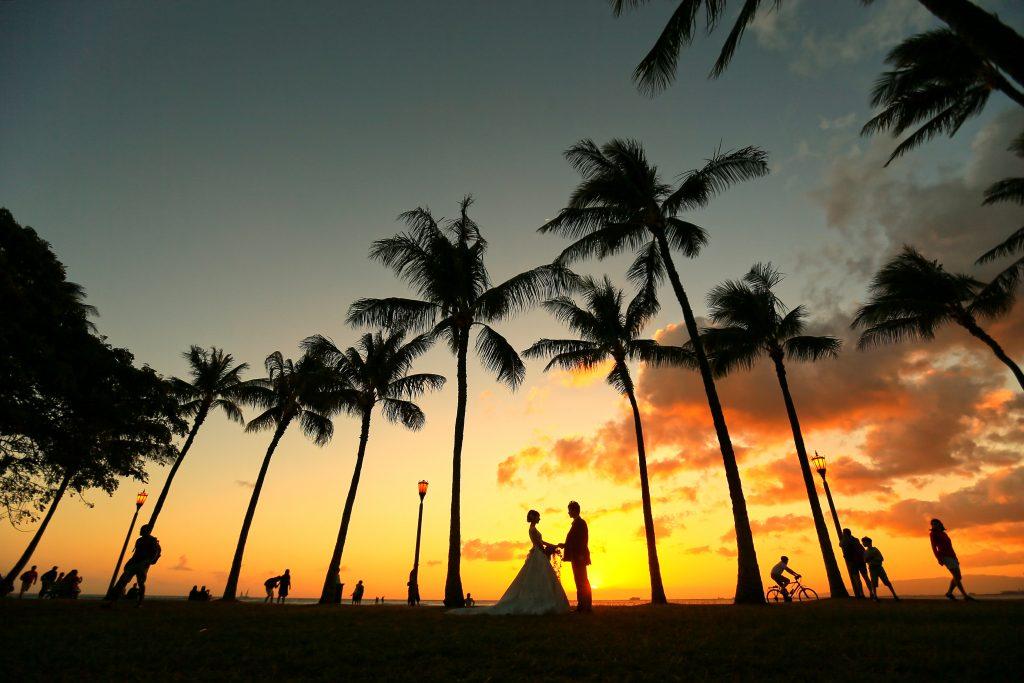 ハワイ フォトツアー カメラマンTAKA 夕陽とヤシの木