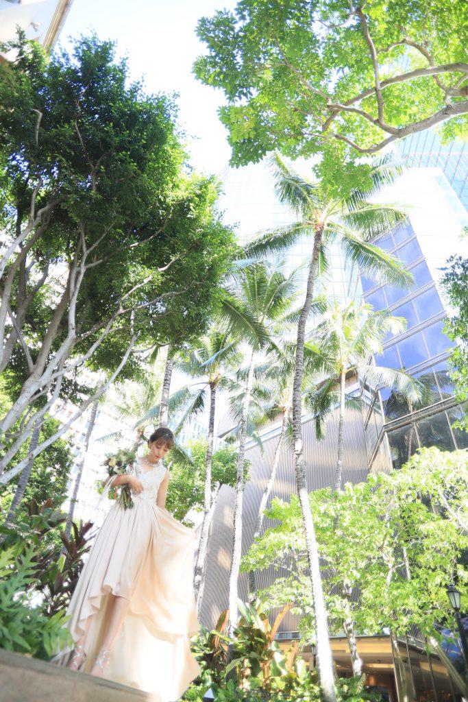 ハワイ ヤシの木 撮影 人気スポット