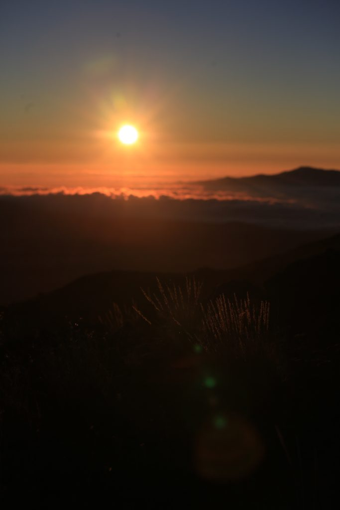 ハワイ サンセット ビッグアイランド