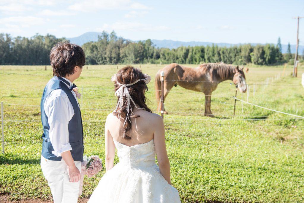 ハワイ 乗馬 撮影 可愛い