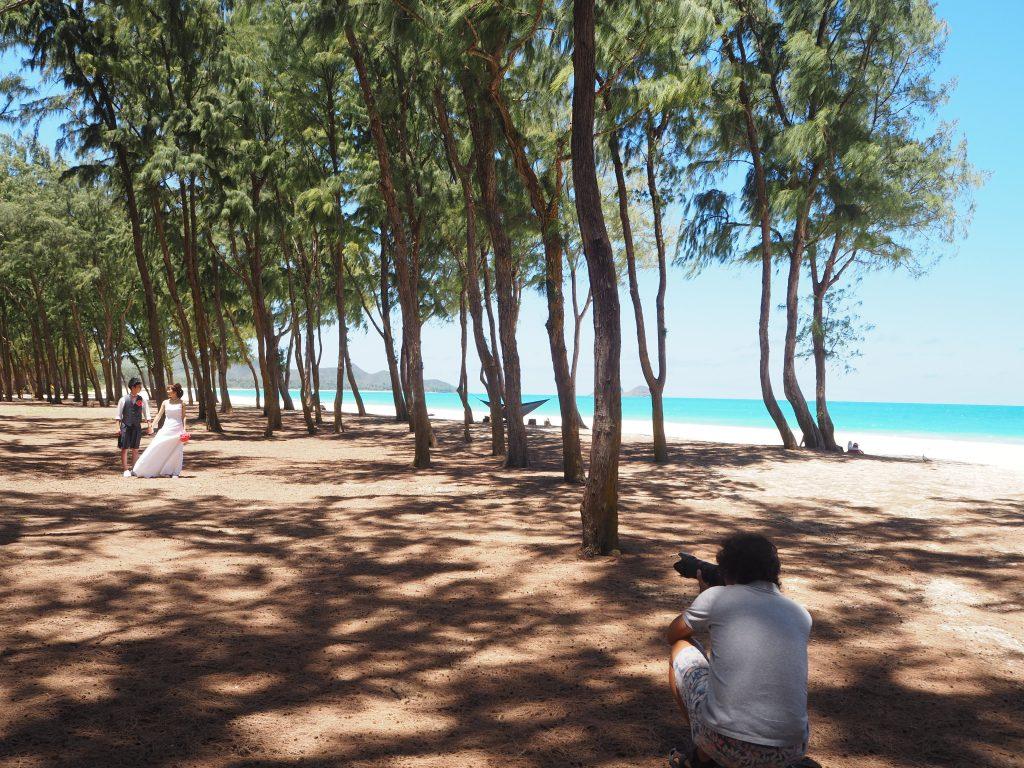 ハワイ ワイマナロビーチ 森林 撮影