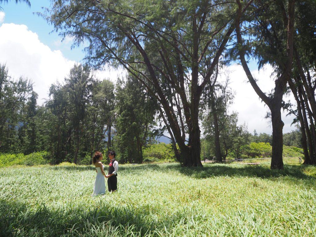 ハワイ おすすめ フォトジェニック 撮影