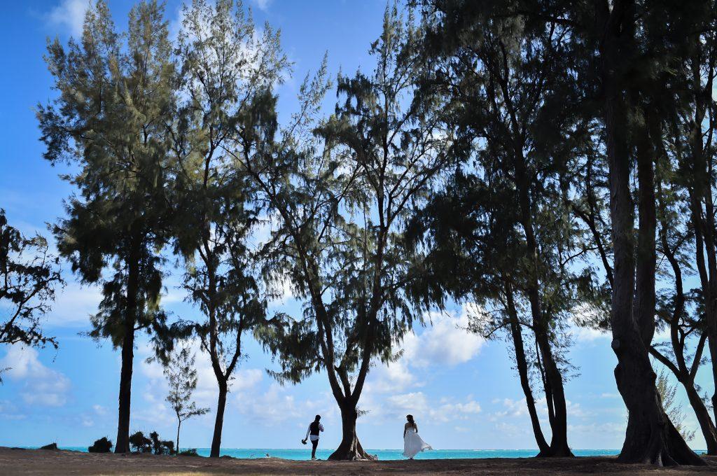 ハワイ ワイマナロビーチ 撮影 人気