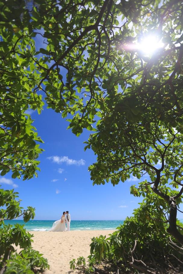 ハワイ ビーチフォト 可愛い 大自然
