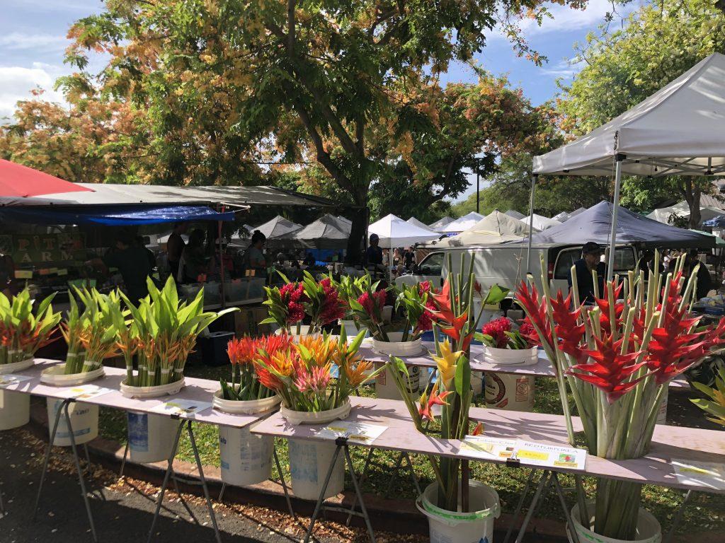 ハワイ 花屋 トロピカル