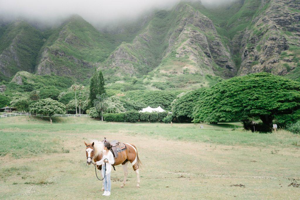 ハワイ おすすめ 撮影