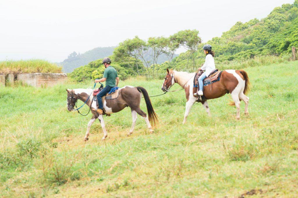 ハワイ 乗馬 フォトツアー