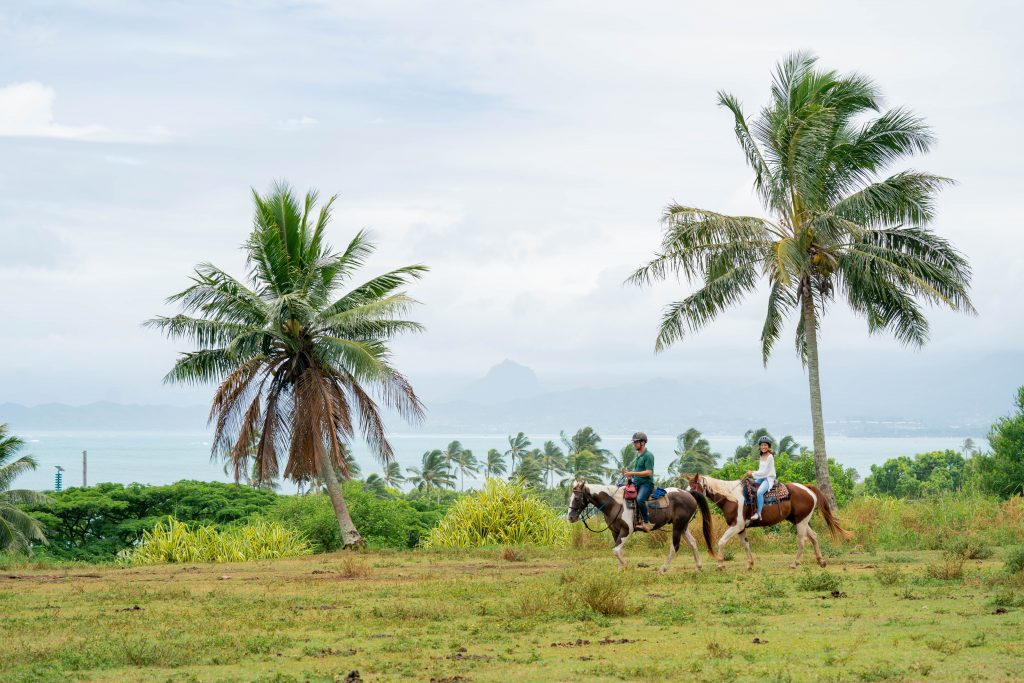 クアロアランチ 乗馬 人気