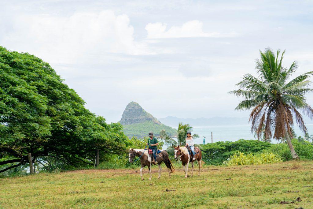ハワイ 絶景 乗馬 チャイナマンズハット