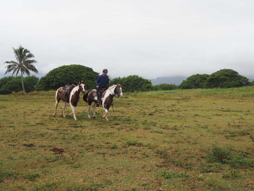 ハワイ プライベート 乗馬