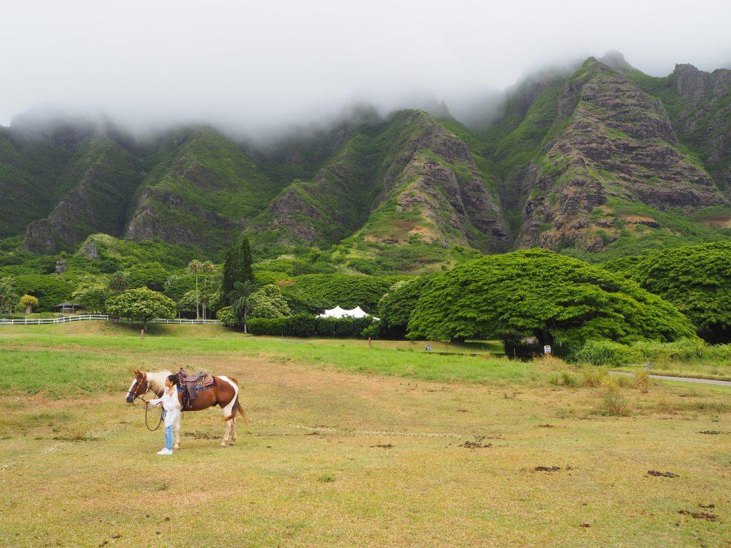 ハワイ クアロアランチ 撮影