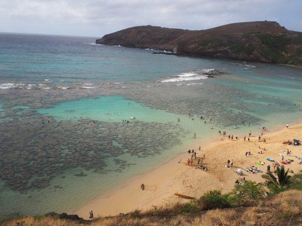 ハワイ ハナウマベイ 絶景