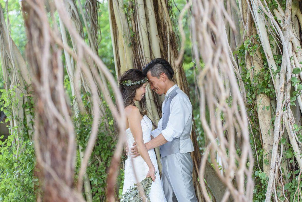 ハワイ バニヤンツリー 神秘的