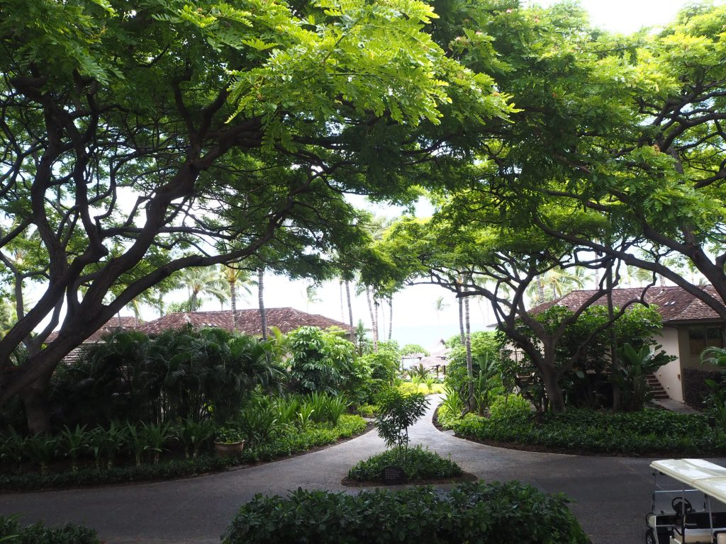 ハワイ 島 場所