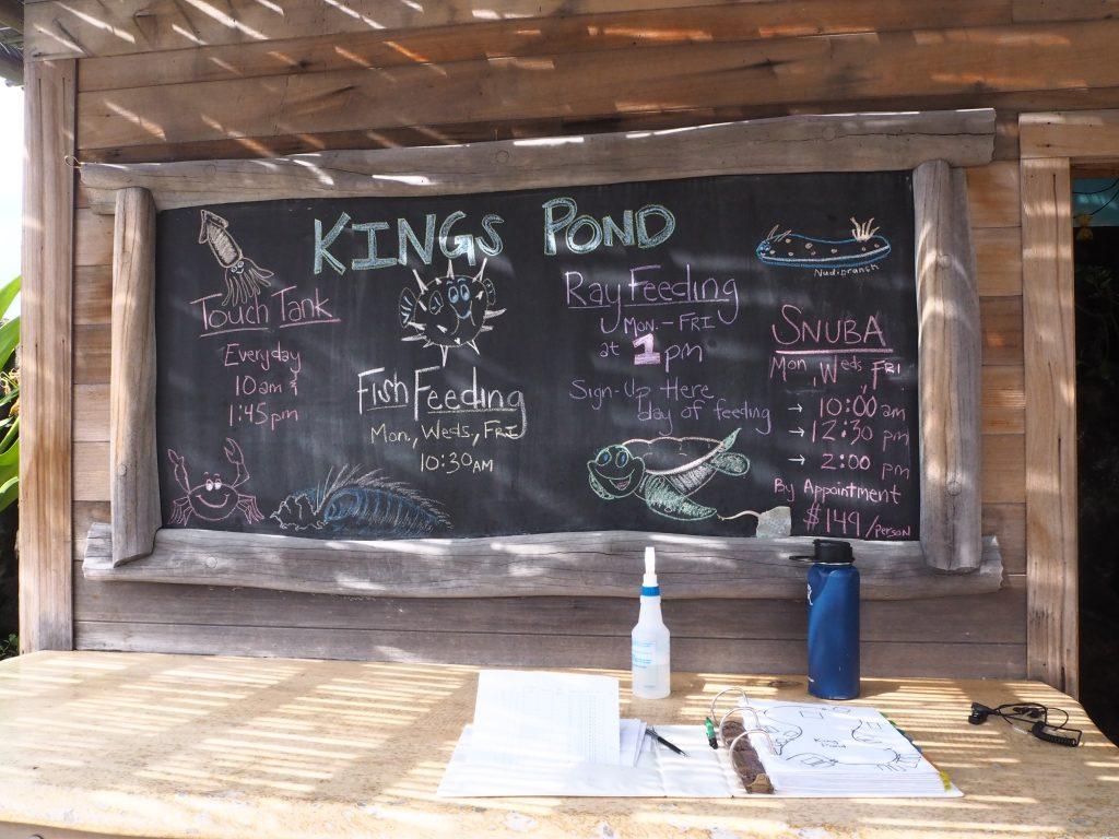 キングスポンド ハワイ島
