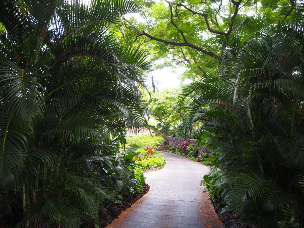 ハワイ島 大自然 ホテル