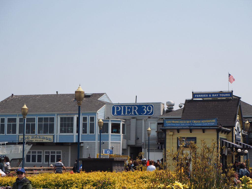 Pier39 おすすめ
