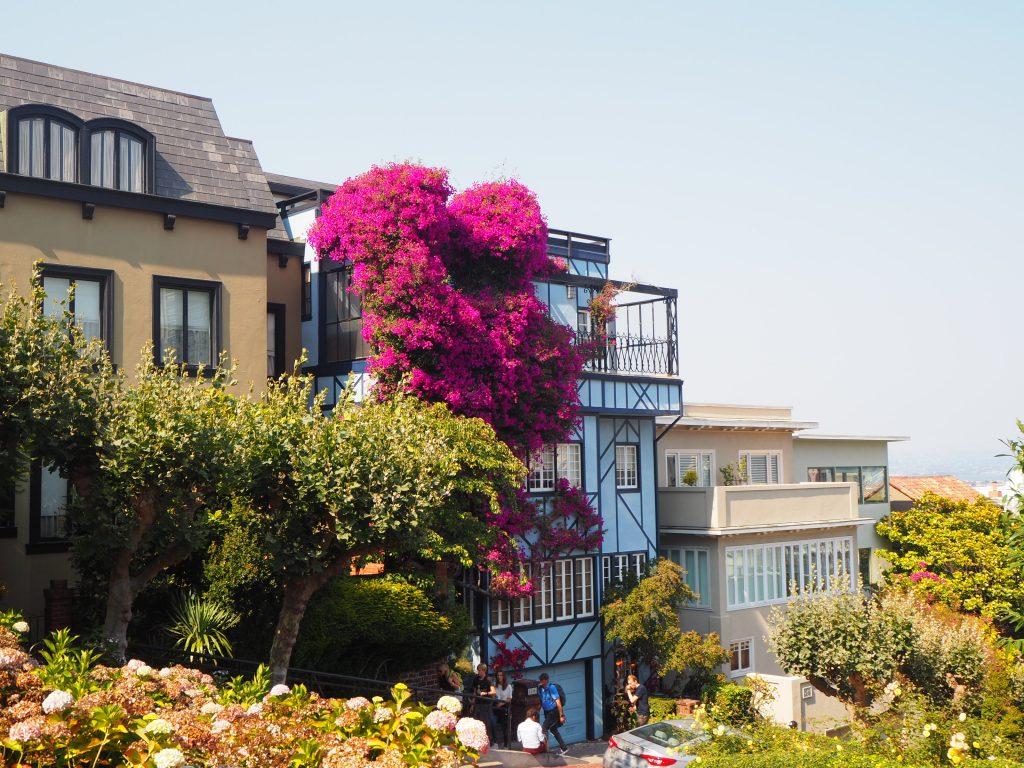 サンフランシスコ 撮影 スポット
