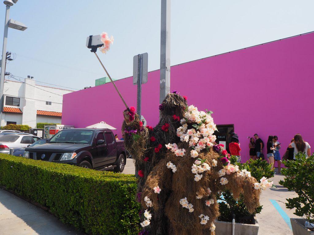 LA ピンクの壁 フォトジェニック