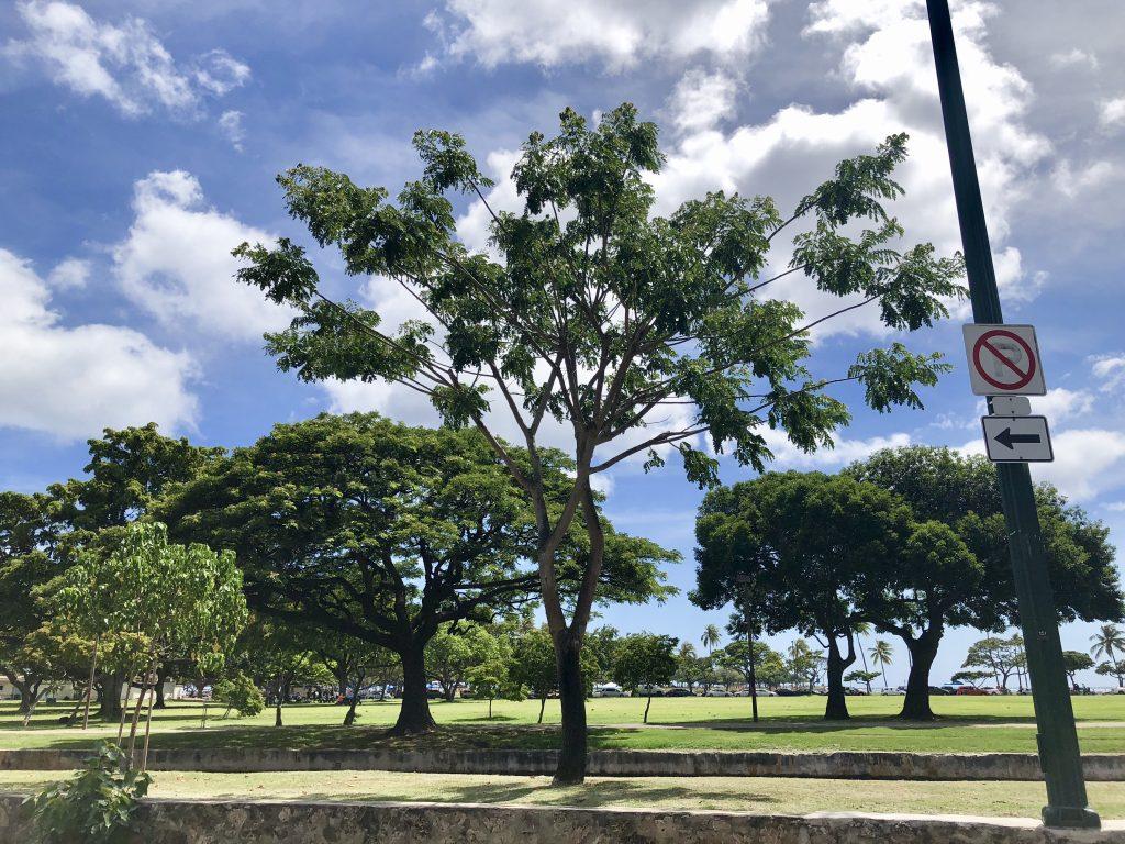 hawaii ハワイ ワイキキ オワフ島