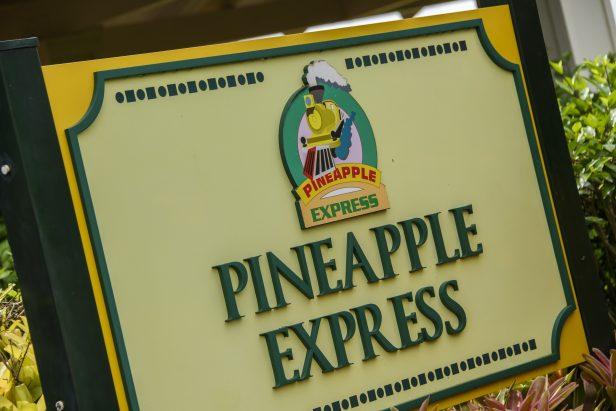 ハワイ 機関車 パイナップル農園