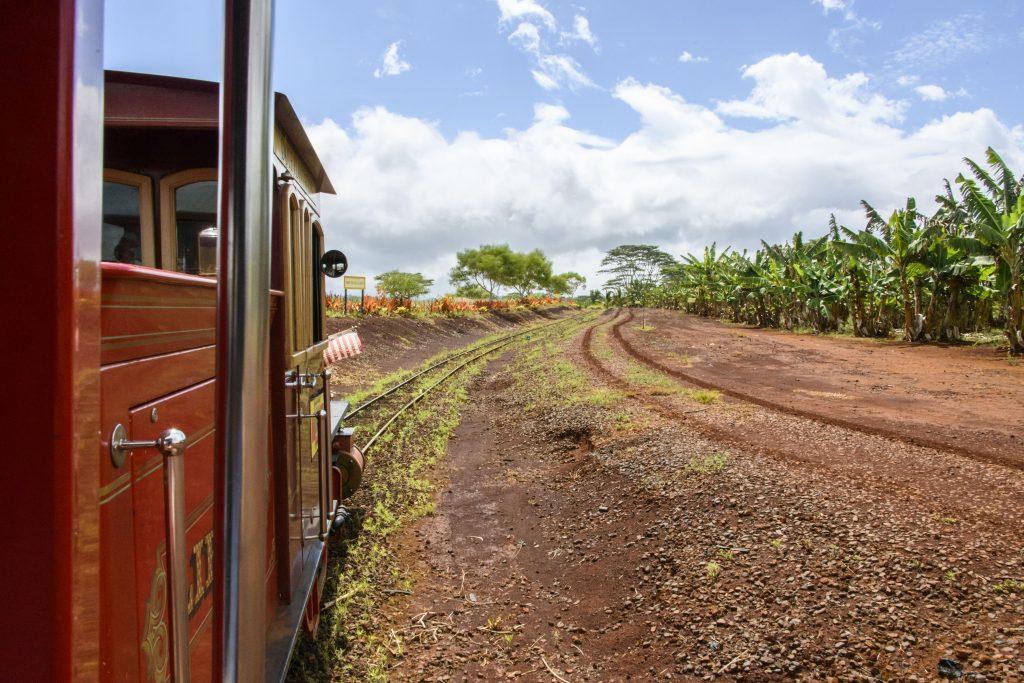 ハワイ 機関車 ドール・プランテーション