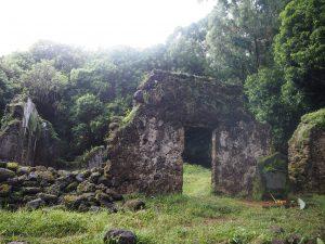 ハワイ カニアカププ 神聖