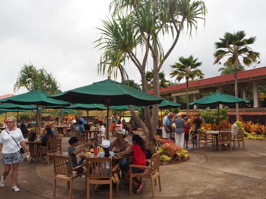 ハワイ ランチ Dole Plantation